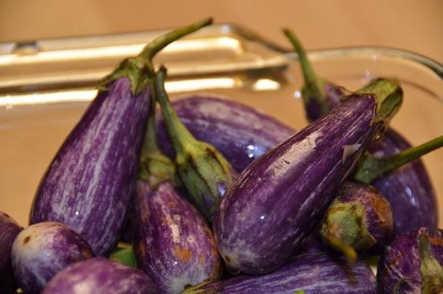 fairy eggplants